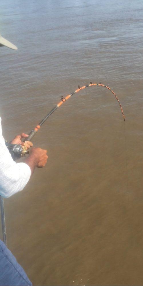 stlcatfishing_0126