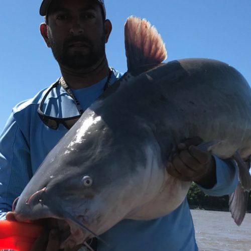 stlcatfishing_0182